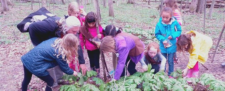 Girl scouts looking at a green plant