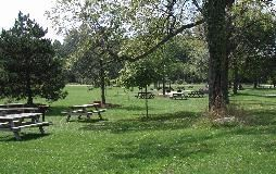 Picnic area in Rolling Hills Park
